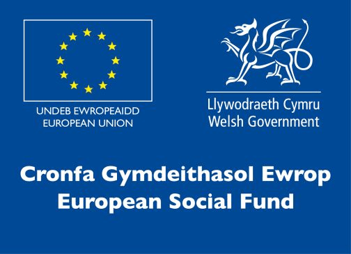 The Apprenticeship, Traineeship and Jobs Growth Wales Programmes, led by the Welsh Government, are supported by the European Social Fund.